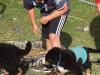 bilder-19-6-2011-herr-merten-059