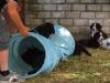 bilder-13-6-2011-herr-merten-076
